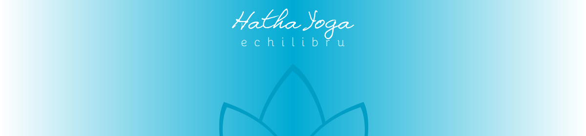 banner hathyogi pentru echilibru