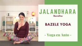 Imagine de coperta pentru clasa yoga online - postura de meditatie